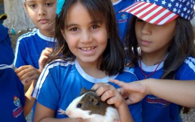 Alunos da Educação Infantil Visitam o Solar Fazendinha